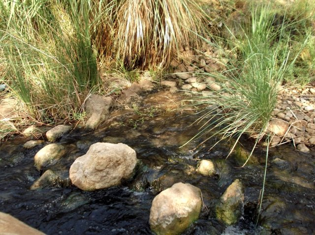 05 Wadi Attun Hot Springs Trail - Expect Wet Feet While Hiking in the Wadi