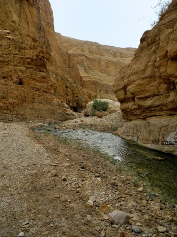11 Wadi Mukheiris Formation Trail - Shallow Stream in the Wadi