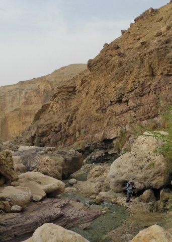 15 Wadi Mukheiris Formation Trail - A View of the Wadi