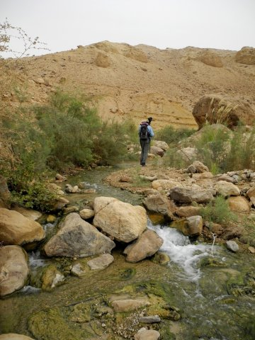 19 Wadi Mukheiris Formation Trail - The Stream in the Valley