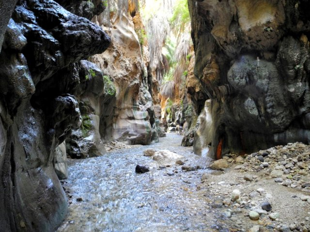 17 Wadi Bin Hammad Tropical Rain Forest Trail - In the Siq